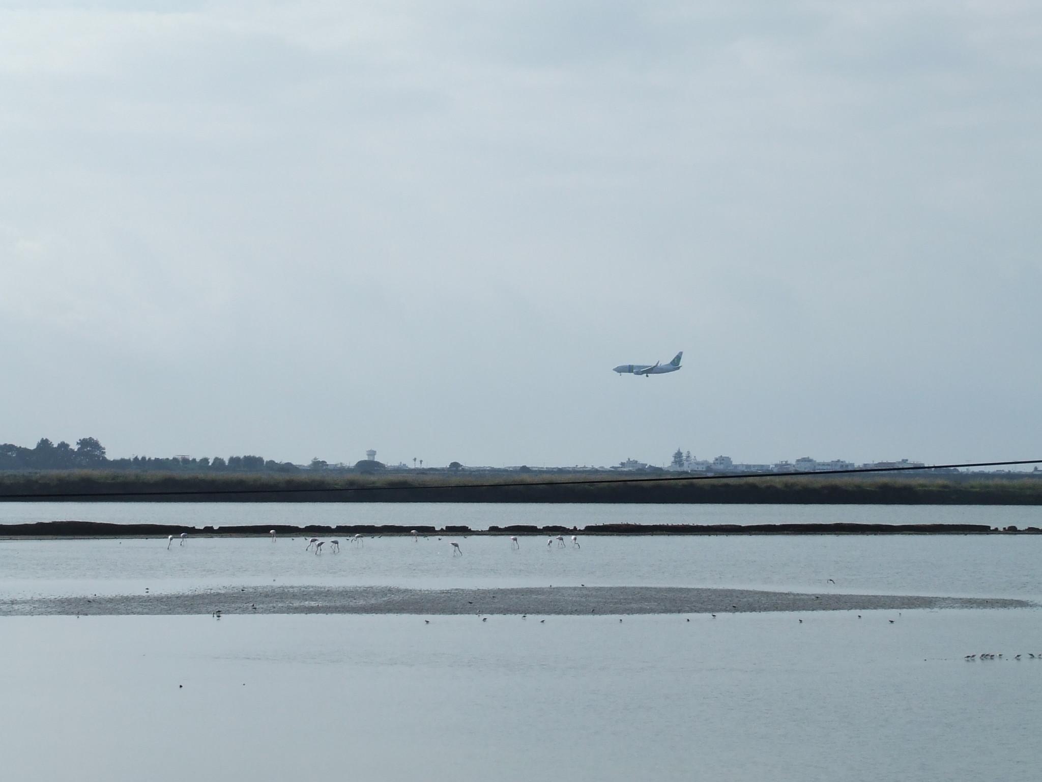 Plane flying over saltpans