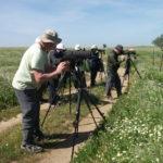 A group of men birdwatching