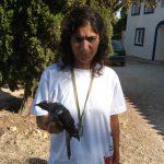 Person holding a bird. Cuckoo